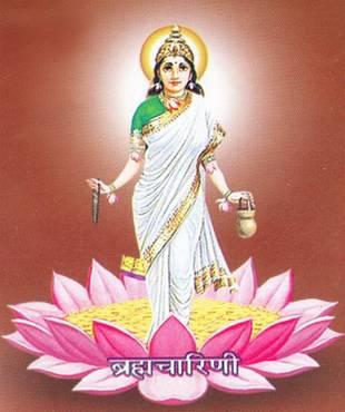 Brahmacharini - Navdurga